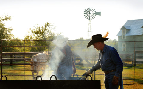 River Ranch Stockyards - River Ranch Stockyards